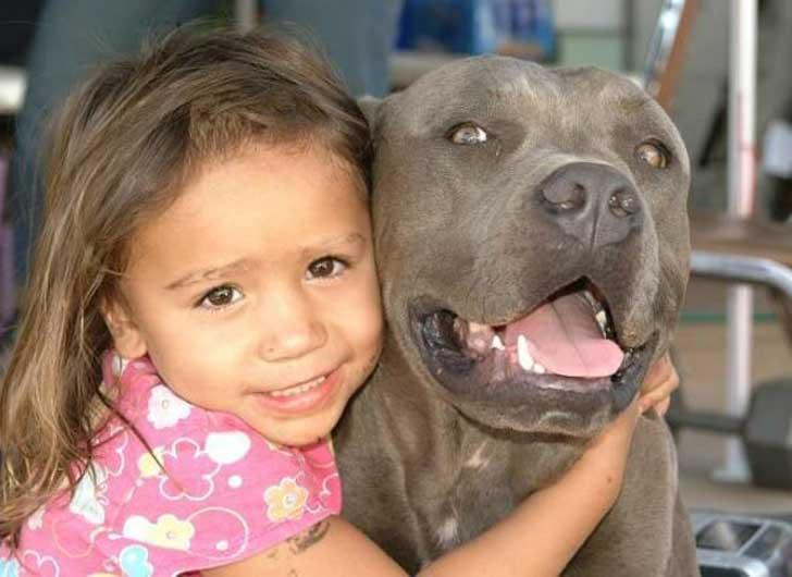 Este perro y esta niña se hicieron mejores amigos hasta que algo todo lo cambió 04