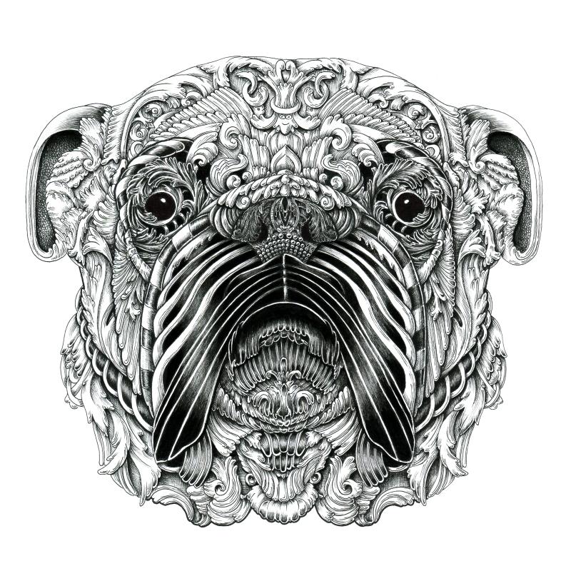 Increíbles retratos de perros que lucen como grabado