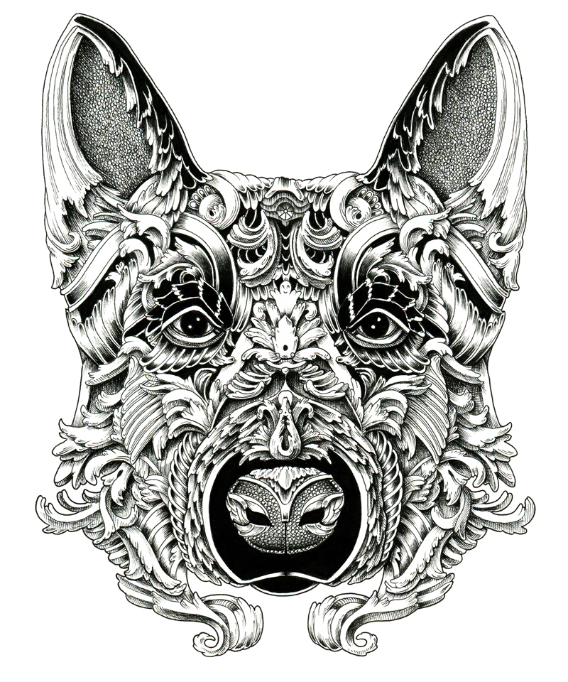 Increíbles retratos de perros que lucen como grabado1