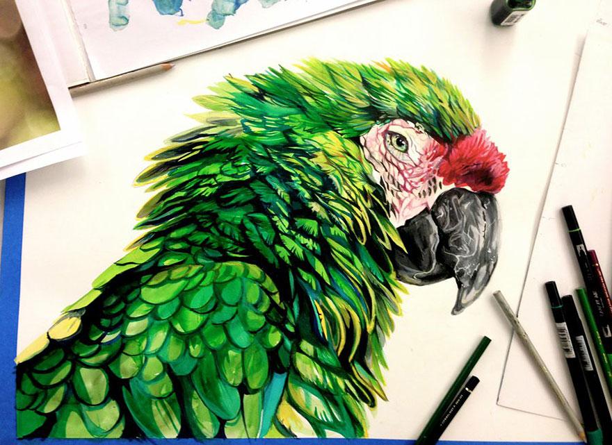 Las artísticas ilustraciones de animales hechas con plumones y colores 8