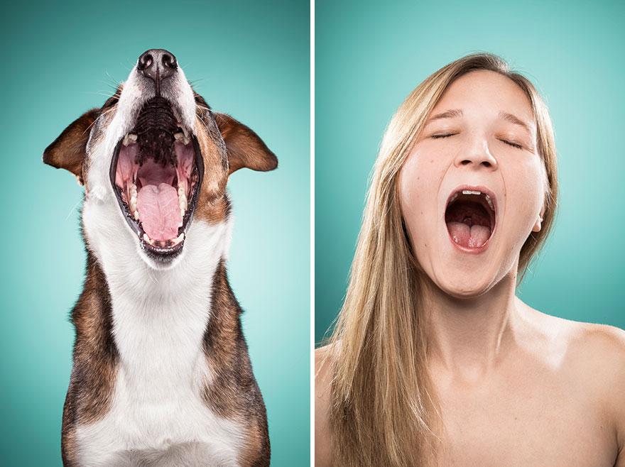 Perros que lucen iguales a sus dueños 6