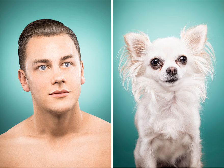 Perros que lucen iguales a sus dueños 7