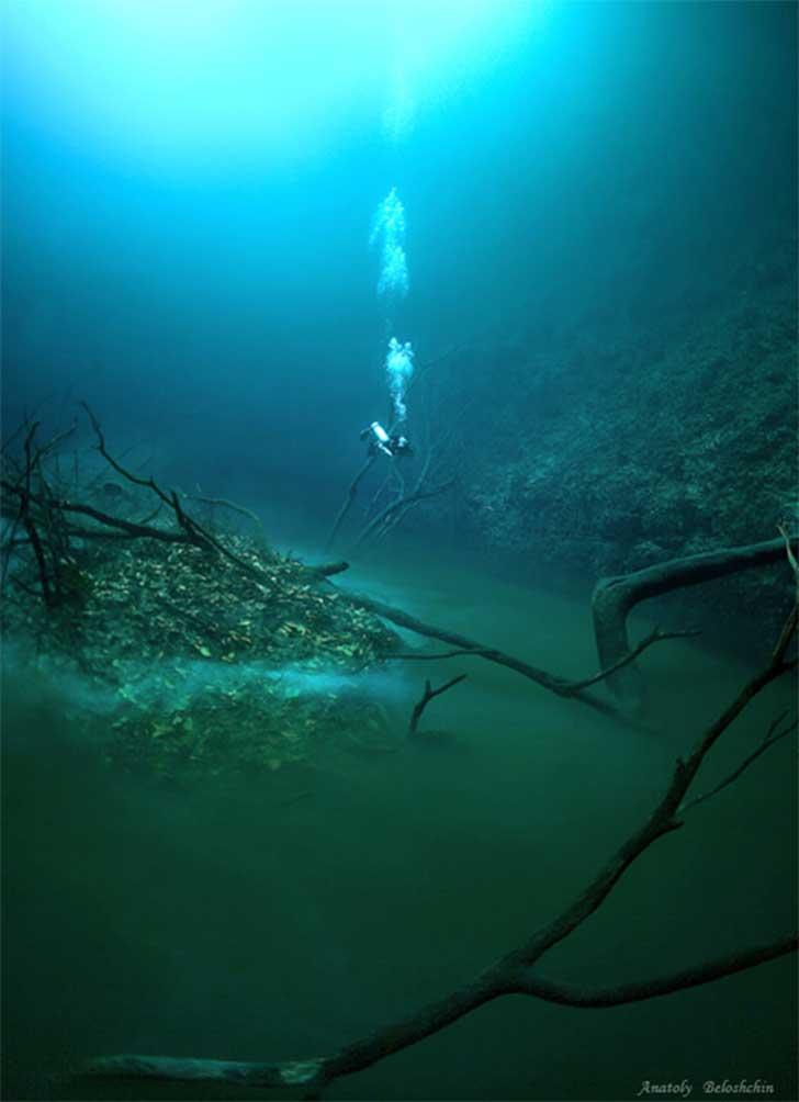 Surreal río bajo el mar 6