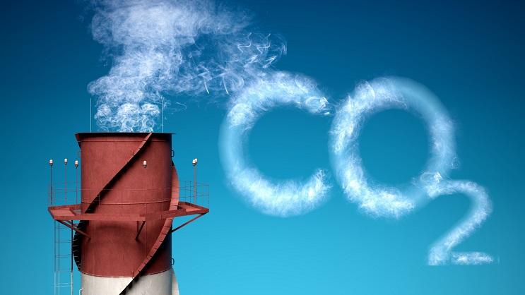 Datos curiosos que están ayudando a disminuir el daño al medio ambiente 10