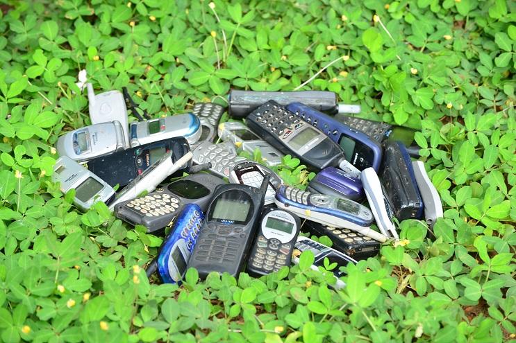 Datos curiosos que están ayudando a disminuir el daño al medio ambiente 16