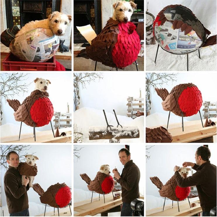 Perro posa para su dueño y es la imagen de sus postales 8