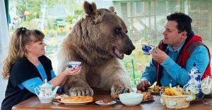 ¿Se imaginan tener un oso como mascota? Esta pareja lo tiene