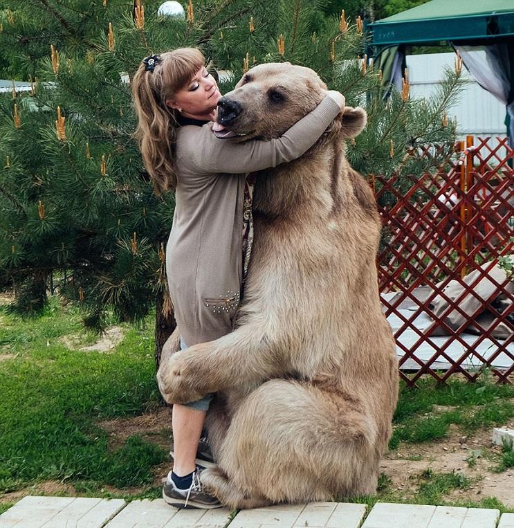Se imaginan teniendo un oso como mascota Esta pareja lo tiene 03