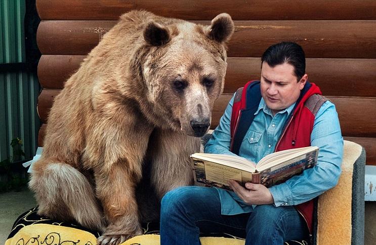 Se imaginan teniendo un oso como mascota Esta pareja lo tiene 07