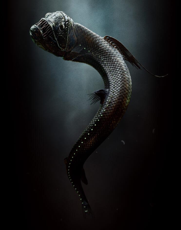 animales marinos raros7