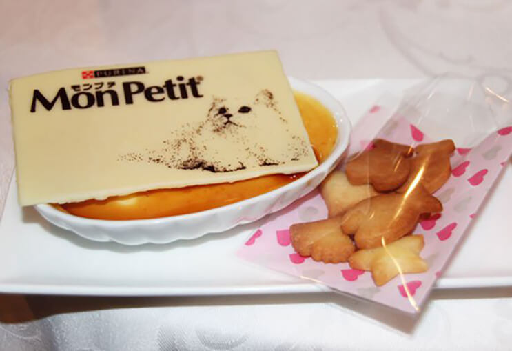 comida de gatos adaptada para humanos118