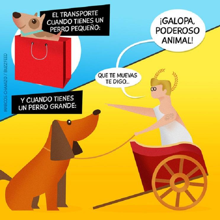 9 situaciones que toda persona con un perro identificará 03