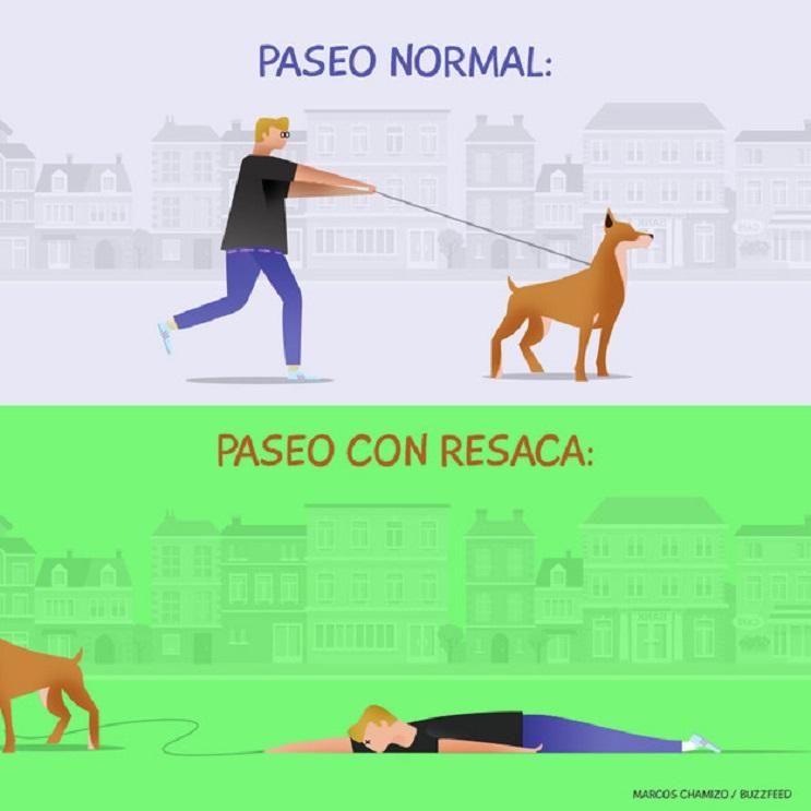 9 situaciones que toda persona con un perro identificará 06