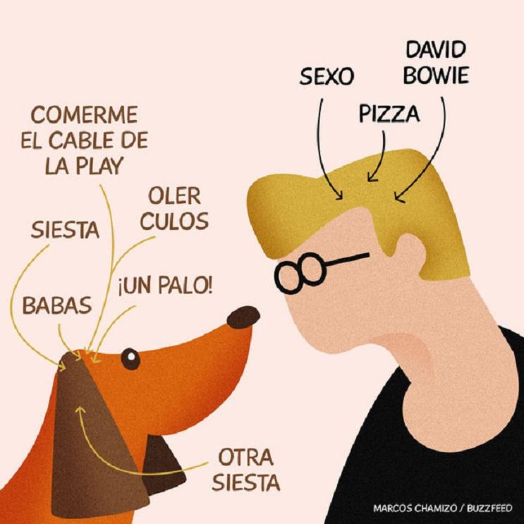 9 situaciones que toda persona con un perro identificará 09