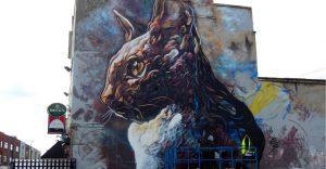 C215: artista urbano embellece las calles con coloridos gatos