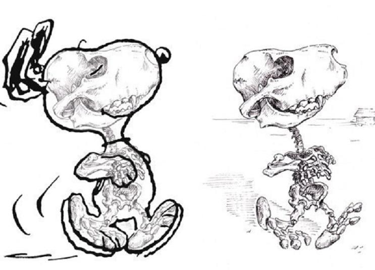 Así es como se verían los esqueletos de algunos personajes del mundo animado 04