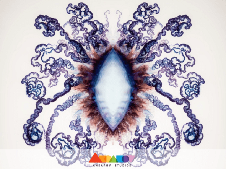 Deadly Beauty A Portrait of the Portuguese Man of War 5