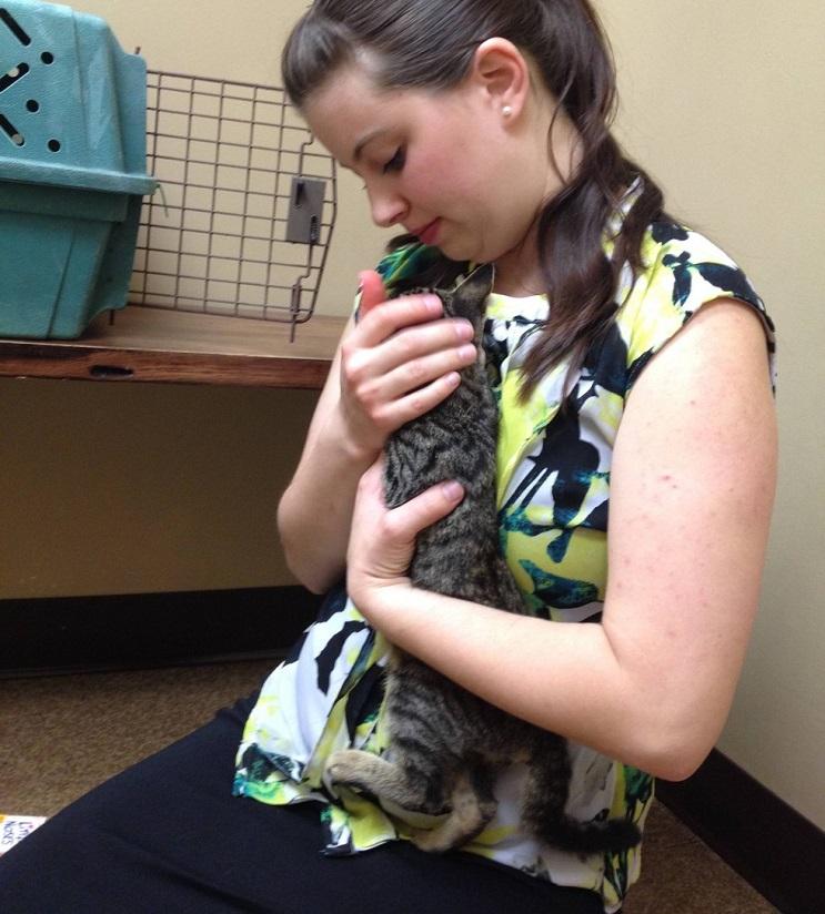 Del más tímido al más amoroso Conoce la historia de este pequeño felino rescatado 01