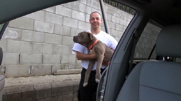 Esta perra estuvo a punto de morir de hambre, pero la vida le dio una segunda oportunidad  02