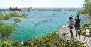 Este acuario norteamericano anunció que liberarán a todos sus delfines en cautiverio