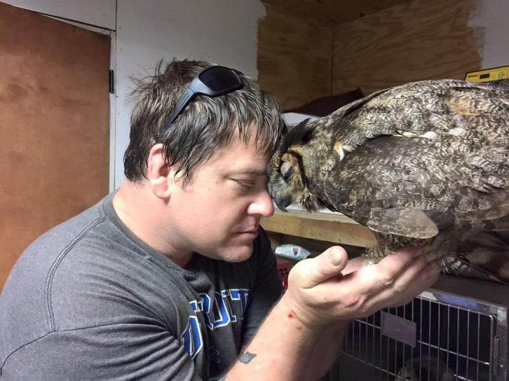 Este búho reconoció al hombre que lo salvó y le dio un enorme abrazo 04