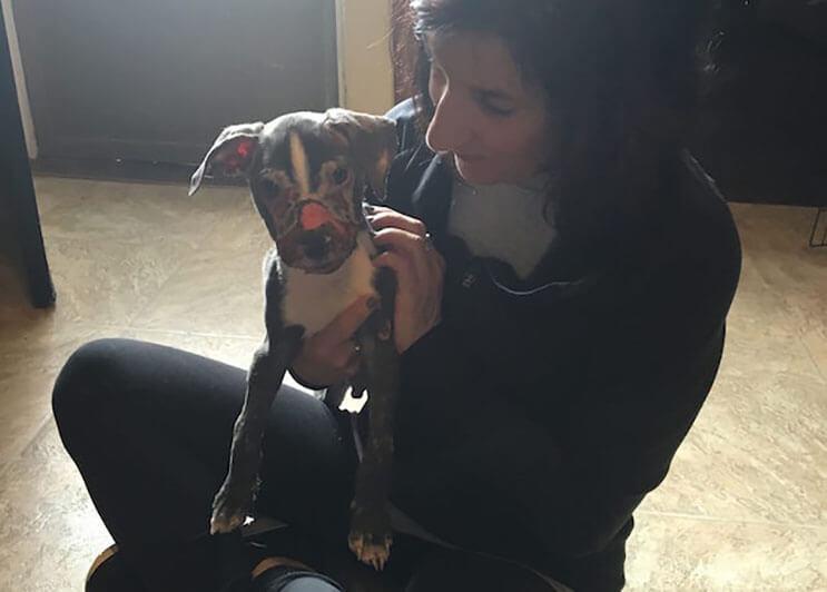 Este cachorro tenía una rara enfermedad y ahora tiene una sonrisa imposible de quitar 04