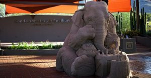 Este elefante de arena jugando ajedrez con un ratón ha causado sensación