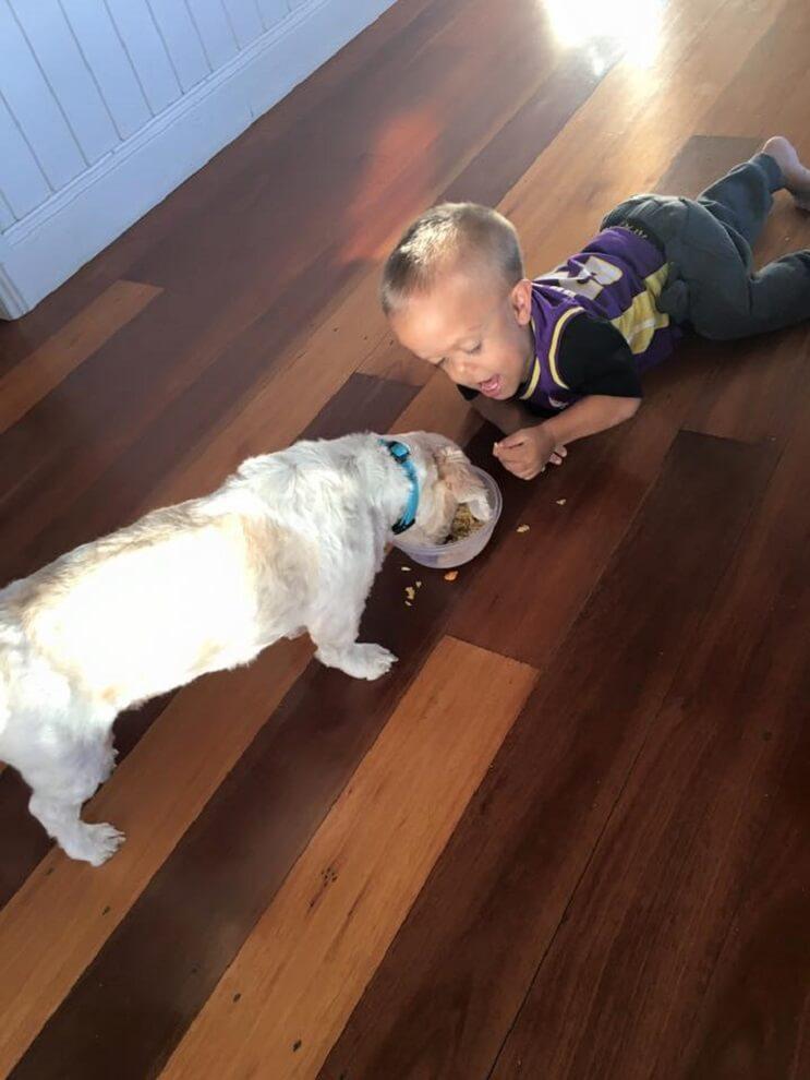 Este perro ayuda a este niño con enanismo a enfrentarse a quienes se burlan de él 03