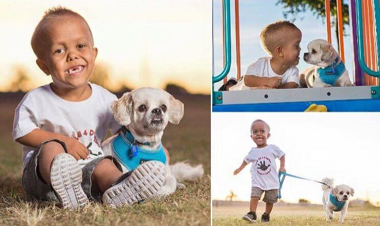 Este perro ayuda a este niño con enanismo a enfrentarse a quienes se burlan de él 05