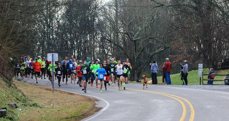 Este perro irrumpió en una maratón y se ganó una medalla por llegar en séptimo puesto 02