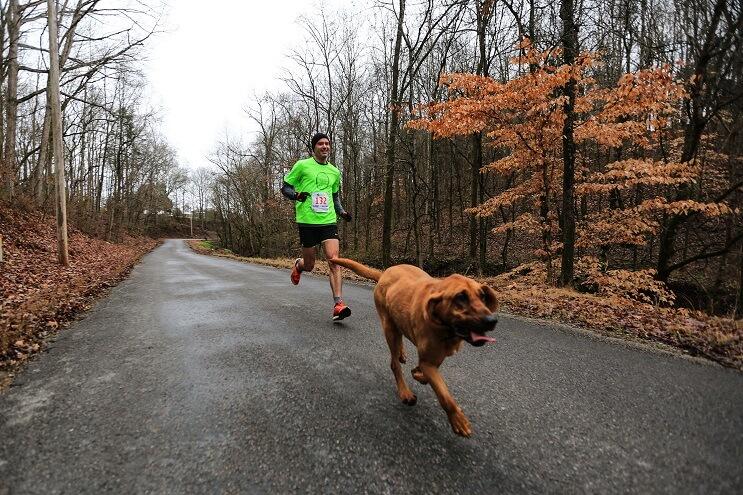 Este perro irrumpió en una maratón y se ganó una medalla por llegar en séptimo puesto 03