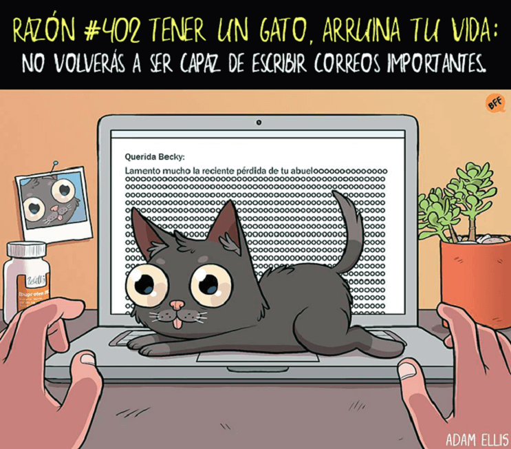 Ilustraciones llenas de sarcasmo y humor que nos muestran por qué tener un gato arruina nuestras vidas 402