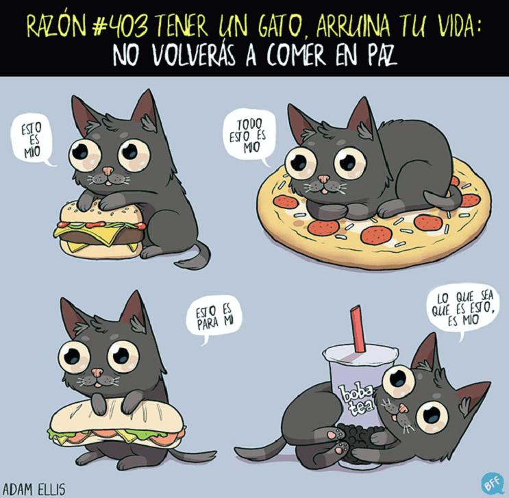 Ilustraciones llenas de sarcasmo y humor que nos muestran por qué tener un gato arruina nuestras vidas 403