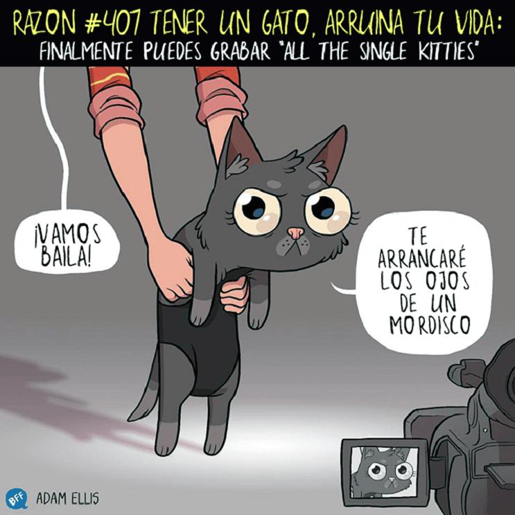 Ilustraciones llenas de sarcasmo y humor que nos muestran por qué tener un gato arruina nuestras vidas 407