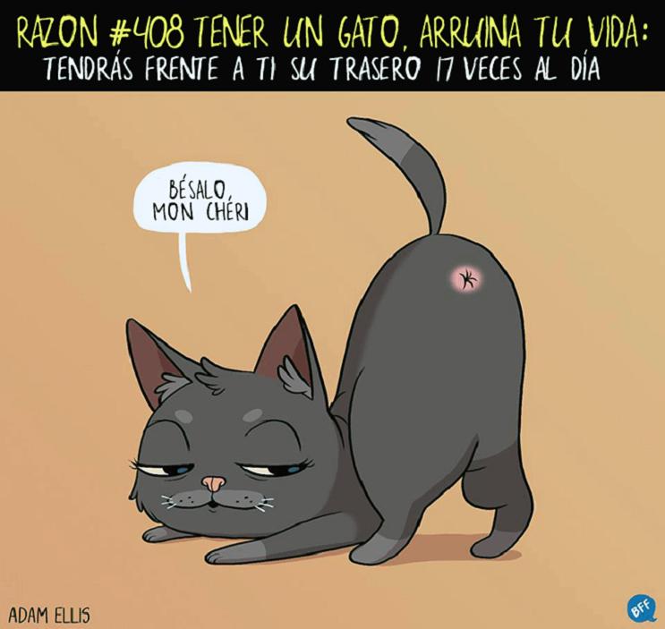 Ilustraciones llenas de sarcasmo y humor que nos muestran por qué tener un gato arruina nuestras vidas 408