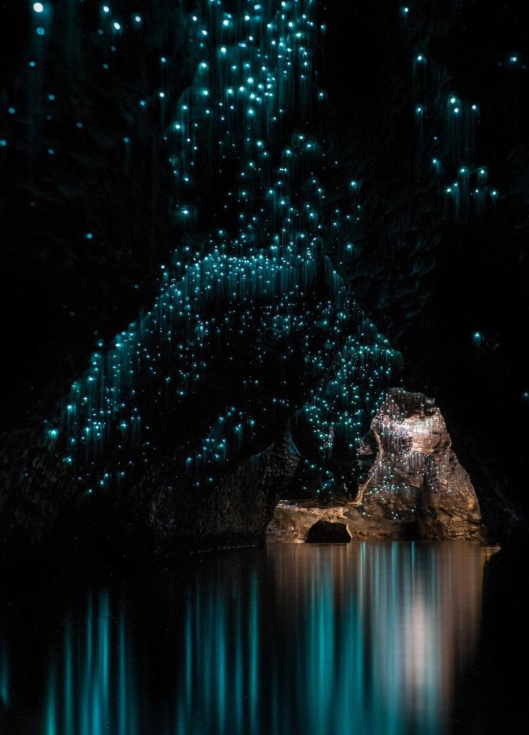Los increíbles gusanos luminosos de las Cuevas de Waitomo, en Nueva Zelanda 6