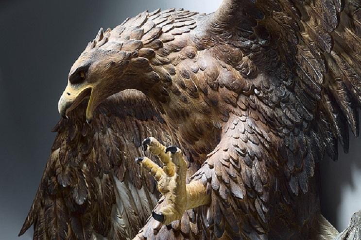 Mira los asombrosos animales que este artista crea empleando madera 18
