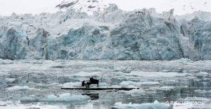 Pianista Ludovico Einaudi nos muestra una arriesgada presentación por un noble motivo