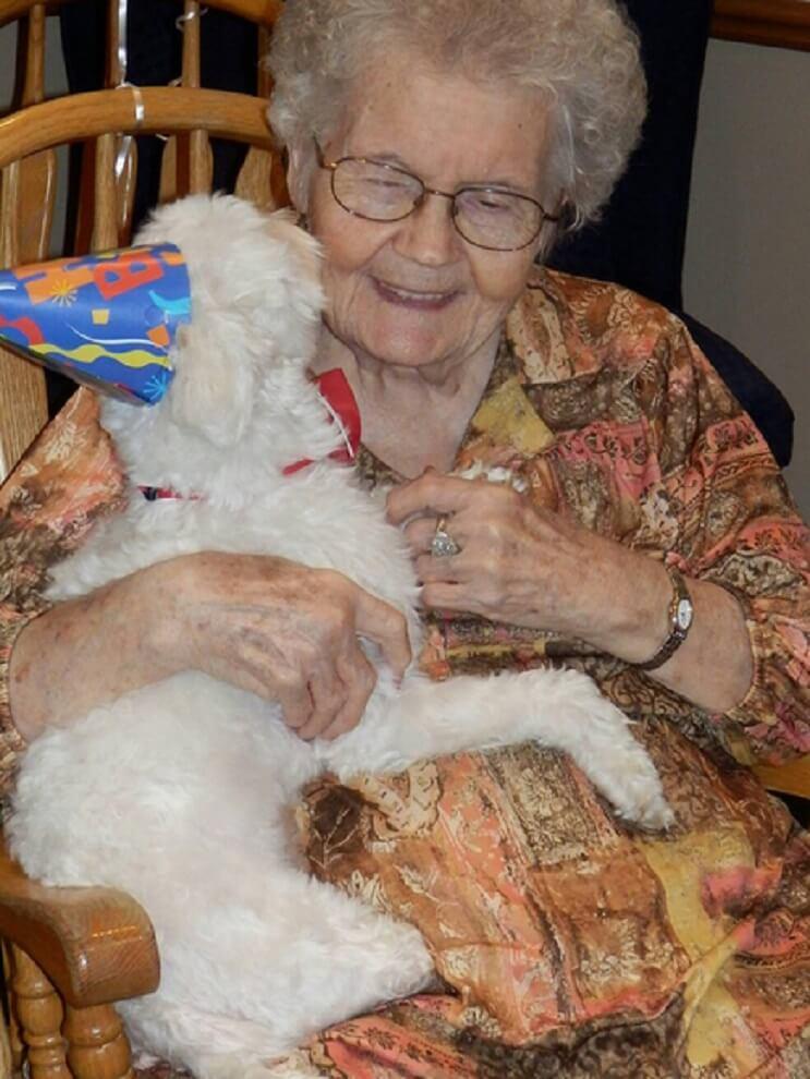 Superación de perrito ciego ayuda a miles de personas 01