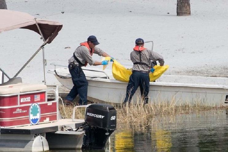 Trágica muerte de niño por caimán desata nuevamente polémica sobre la convivencia entre humanos y animales salvajes 9