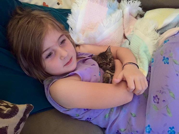 Una niña de 5 años y el gatito que ayudó a salvar se han vuelto inseparables 2