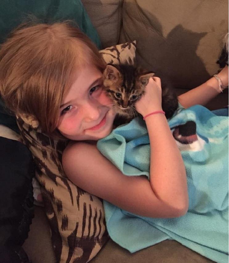 Una niña de 5 años y el gatito que ayudó a salvar se han vuelto inseparables 3