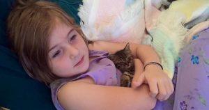 Una niña de 5 años y el gatito que ayudó a salvar se han vuelto inseparables