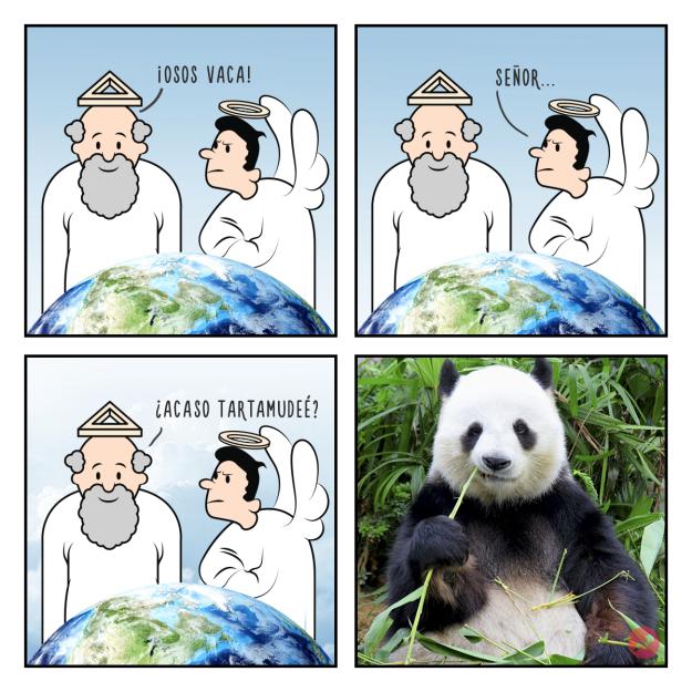 Cómo fueron creados los animales Estas divertidas ilustraciones nos lo mostrarán oso panda