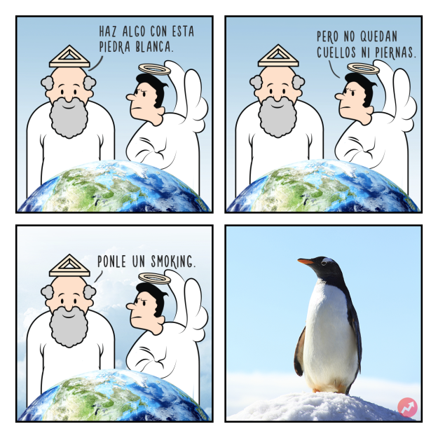 Cómo fueron creados los animales Estas divertidas ilustraciones nos lo mostrarán pinguino