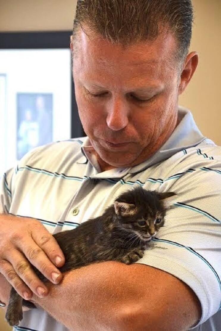 Conoce la historia de seis gatitos abandonados que lograron sobrevivir 6