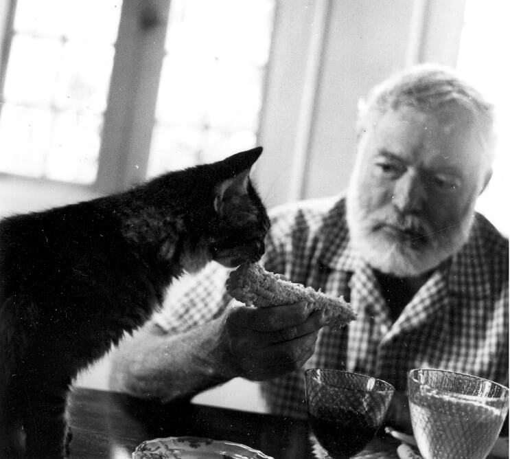 Ernest Hemingway comiendo con gato