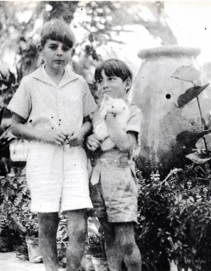 Conoce los magníficos gatos polidáctiles de Ernest Hemingway 7