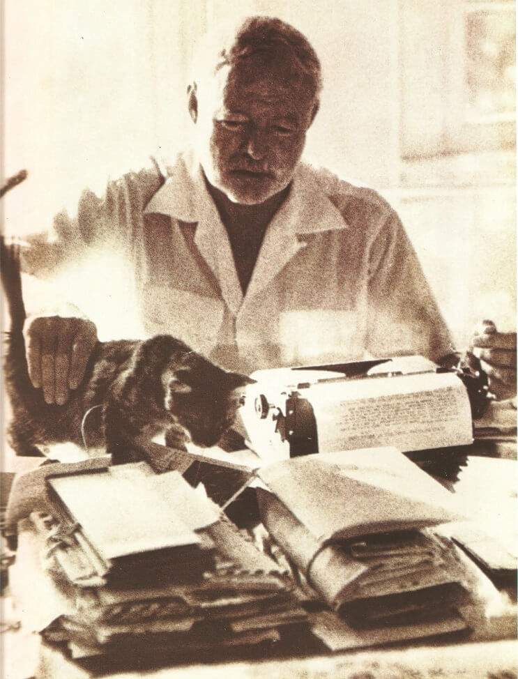 Conoce los magníficos gatos polidáctiles de Ernest Hemingway 8