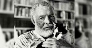 Conoce los magníficos gatos polidáctiles de Ernest Hemingway